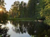 Тихое Озеро (Ростовская обл., Аксайскиский р-н, ст-ца Ольгинская, пер 3-й )