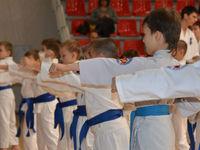 Национальный Союз Республики Татарстан Каратэ Кекусинкай (Казань, ул. Кутузова, 15)