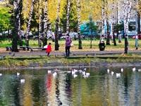 Парк имени Урицкого (Казань, ул. Гагарина, 49)