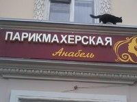 Анабель (Казань, ул. Декабристов, 160/40)
