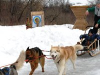 Хаски-парк (Казань,пос. Старое Аракчино, ул Затонская, д 12 )