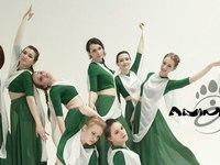 Animals dance company (Казань, ул. Лево-Булачная, 16)