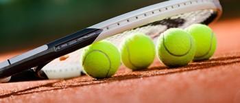 Школа большого тенниса (Ростов-на-Дону, ул. Яковлева, 15)