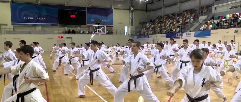 Национальный союз Республики Татарстан Каратэ Кекусинкай (Казань, ул. Ломжинская, 15)